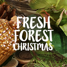 Fresh Forest Christmas Deocorating Inspiration
